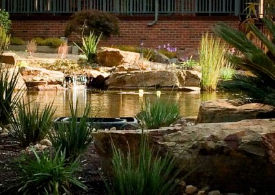Cockatoo Pond built by PCB Waterscapes
