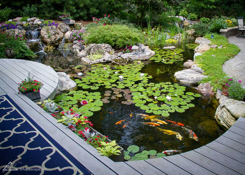 Ecosystem Pond built by PCB Waterscapes