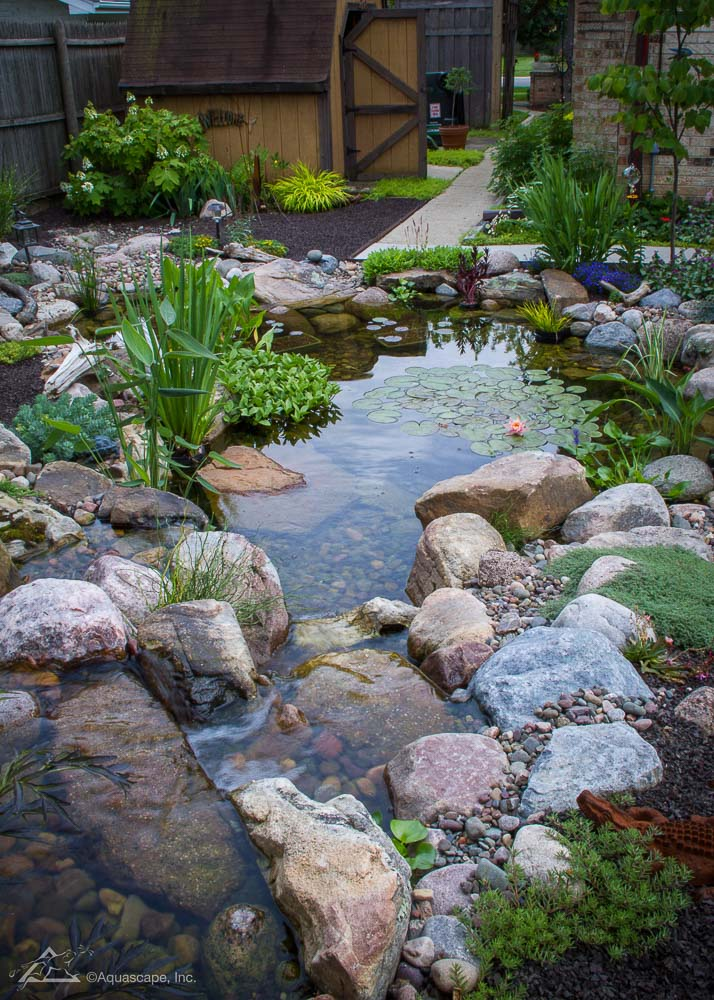 Medium sized Ecosystem Pond built by PCB Waterscapes