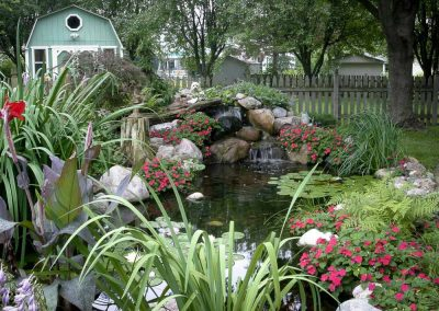 Backyard pond built by PCB Waterscapes