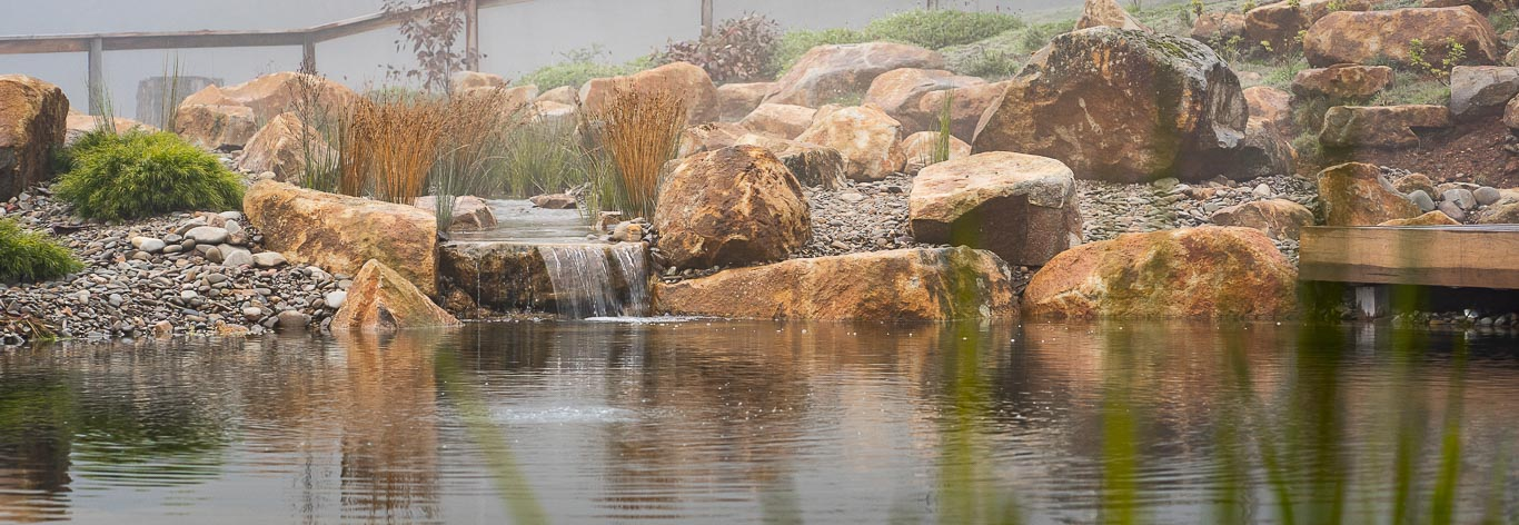Watergardens and Natural Swimming pools Lilydale
